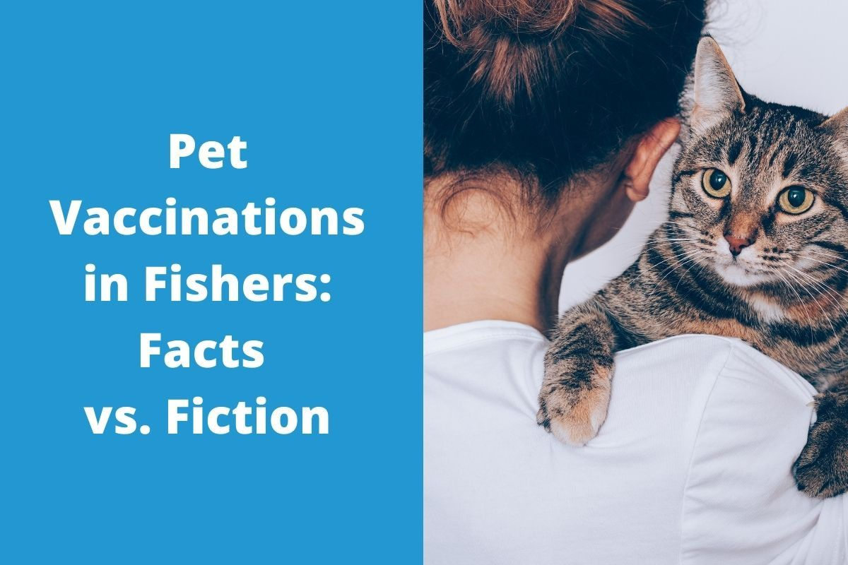 Pet-Vaccinations-in-Fishers_-Facts-vs.-Fiction